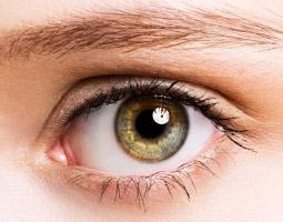 etiologia-enfermedades-iridologia-on-line